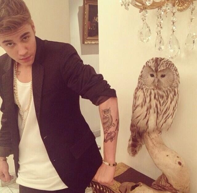 http://popbabble.files.wordpress.com/2014/07/bieber-bird-owl.jpg
