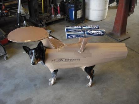 Dog-star-trek-costume