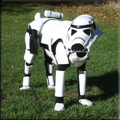 dog star wars2
